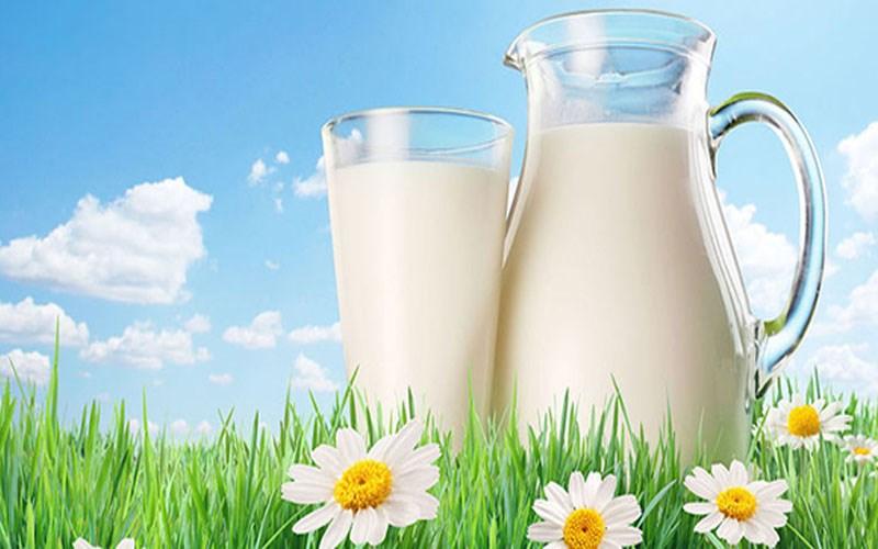 Sữa tươi Úc cung cấp canxi, sắt, chất béo, chất đạm, đường và nhiều vitamin cho mẹ và bé
