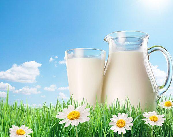 Bé trên 12 tháng tuổi đã có thể uống được sữa tươi Úc